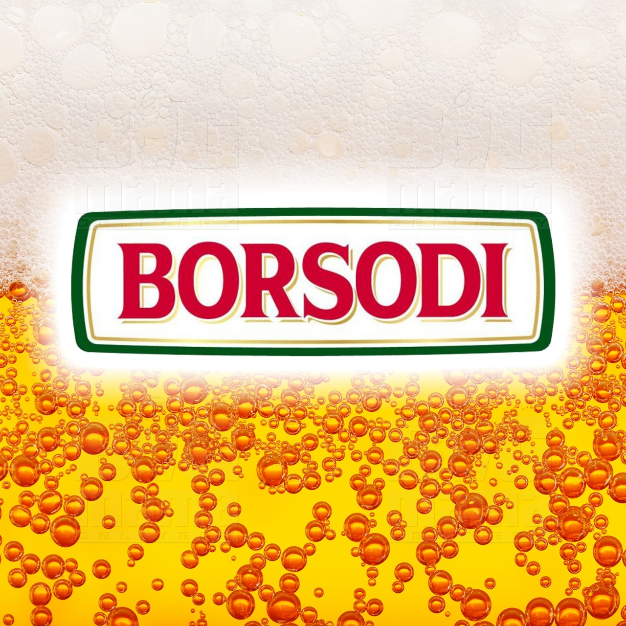 Product #163 image - Bere Borsodi